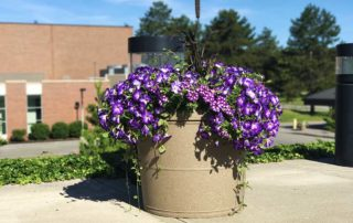 Commercial Planters - large round self watering planters for university streetscape