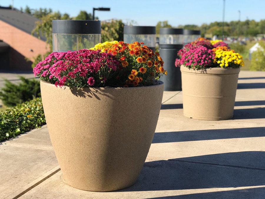 Fall EarthPlanters at RIT