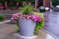 commercial planters nebraska self watering 1